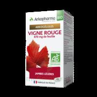 Arkogélules Vigne Rouge Bio Gélules Fl/45 à ANNEMASSE