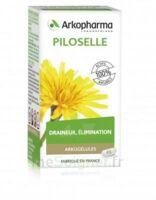 Arkogélules Piloselle Gélules Fl/45 à ANNEMASSE