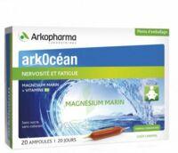 Arkocean Magnesium Marin Solution Buvable Caramel 20 Ampoules/10ml à ANNEMASSE