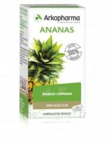 Arkogélules Ananas Gélules Fl/45 à ANNEMASSE
