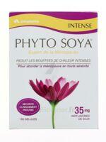 Arkopharma Phyto Soya Intense 180 Gelules à ANNEMASSE