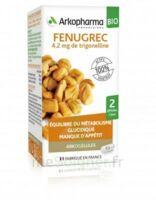 Arkogélules Fenugrec Bio Gélules Fl/40 à ANNEMASSE