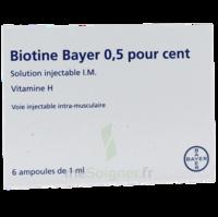 Biotine Bayer 0,5 Pour Cent, Solution Injectable I.m. à ANNEMASSE