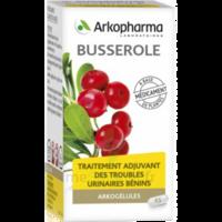Arkogelules Busserole Gélules Fl/45 à ANNEMASSE