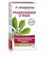 Arkogelules Marronnier D'inde Gélules Fl/45 à ANNEMASSE