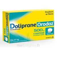 Dolipraneorodoz 500 Mg, Comprimé Orodispersible à ANNEMASSE