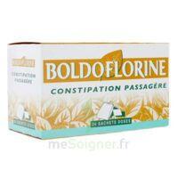 Boldoflorine, Mélange De Plantes Pour Tisane En Sachet-dose B/24 à ANNEMASSE