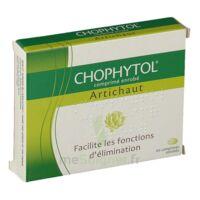 Chophytol Cpr Enr 2plaq/30 à ANNEMASSE