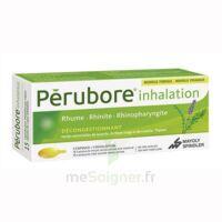 Perubore Caps Inhalation Par Vapeur Inhalation Plq/15 à ANNEMASSE