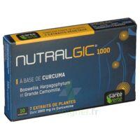 Nutralgic Comprimés Inflammations B/10 à ANNEMASSE