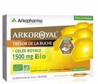 Arkoroyal Gelée Royale Bio 1500 Mg Solution Buvable 20 Ampoules/10ml à ANNEMASSE