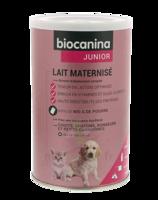 Biocanina Lait Poudre Maternisé B/400g à ANNEMASSE