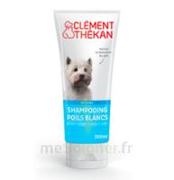 Clément Thékan Shampooing Poils Blancs T/200ml à ANNEMASSE