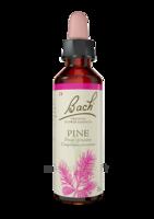 Fleurs De Bach® Original Pine - 20 Ml à ANNEMASSE