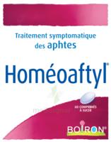Boiron Homéoaftyl Comprimés à ANNEMASSE