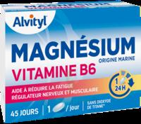 Govital Magnésium Vitamine B6 Comprimés B/45 à ANNEMASSE