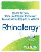 Boiron Rhinallergy Comprimés B/40 à ANNEMASSE