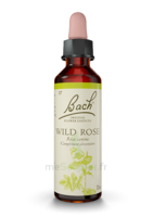 Fleurs De Bach® Original Wild Rose - 20 Ml à ANNEMASSE